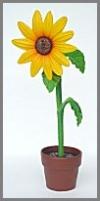 Sonnenblume,kl 31x21x94cm