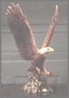 Adler m.o.Flügel