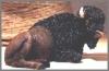 Büffel, braun,12x7cm
