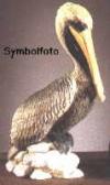 Pelikan, Pacific,8x16cm