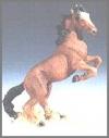Mustang, braun,17cm