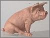 Schwein,10x7,5cm