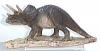 Triceratops,16x8cm