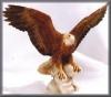 Adler,auf Fels,18,5x13,5cm