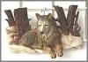 Wolf, Wandbild,23x15cm
