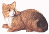 Katze, lieg.M.22x16cm