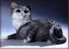 Katze, liegend,B.28cm