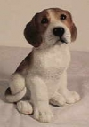 Beagle, JH.,23cm