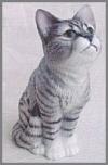 Aufrechte Katze, schw-weiß