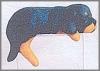 Regalhund