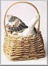 Katze im Korb