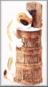 Katze im Buttertrog